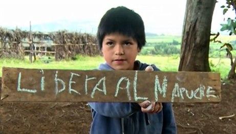 libera-al-mapuche2web