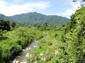 Minin-Chiapas3